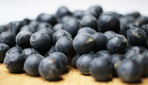 【黒豆の最高級品種】丹波黒大豆の栄養素と効能効果について|おかき・あられ・せんべいの素材編