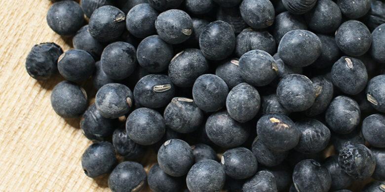 おかきに使用している丹波篠山産黒大豆の写真