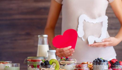 栄養と栄養素の違いとは?|消化吸収とエネルギー代謝|おかき・あられ・せんべいとの関係