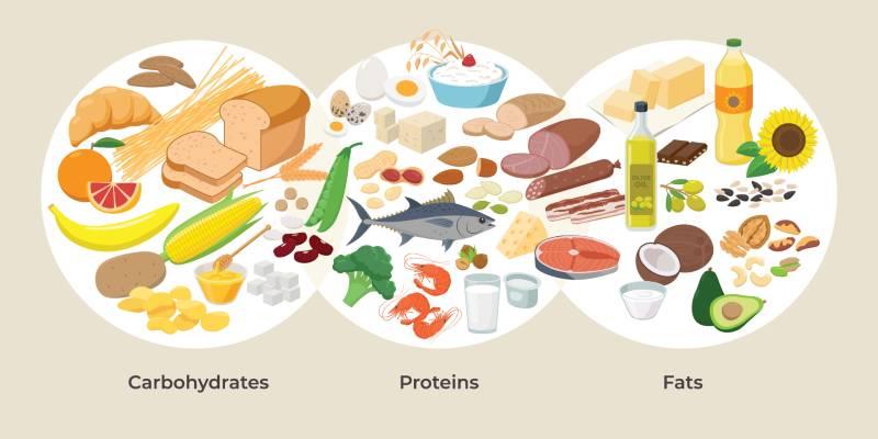 三大栄養素の食品グループ