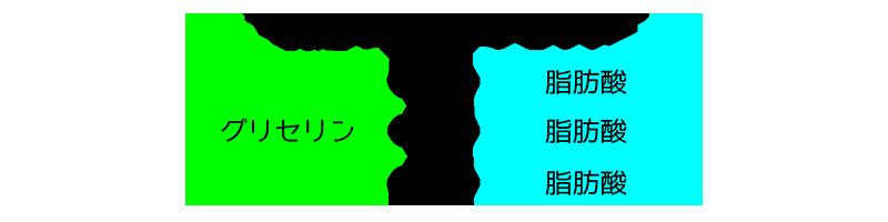トリグリセリドのイメージ画像