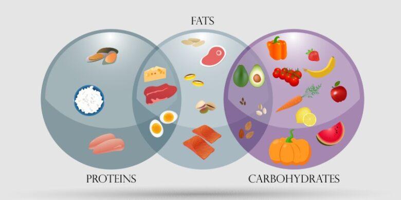 三大栄養素の構成図