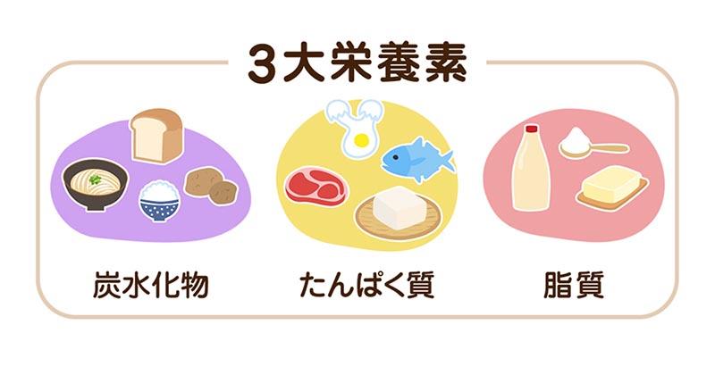 三大栄養素(イメージ画像)