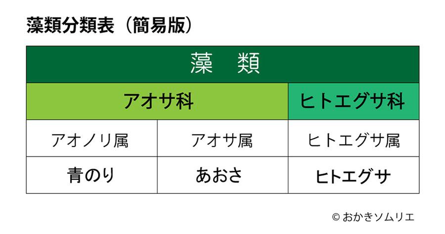 藻類分類表(青のり・あおさ・ヒトエグサ)製作図2021.8.15