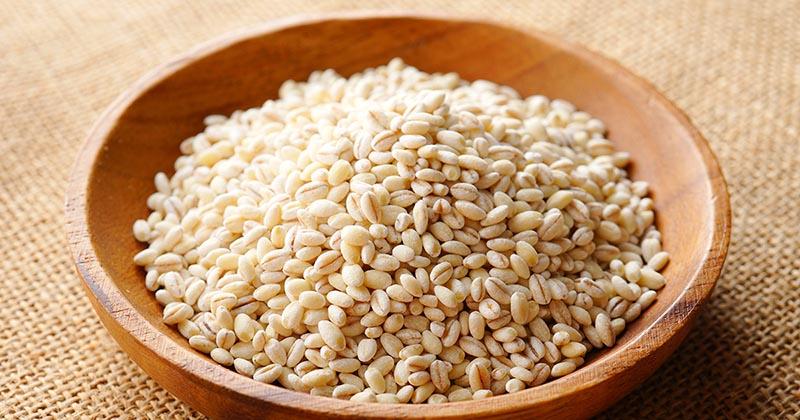 お皿に入ったもち麦(イメージ画像)