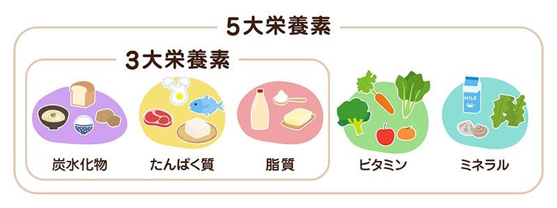 5大栄養素の分類図