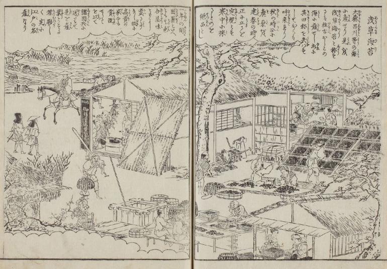『江戸名所図会』「浅草海苔」(出典元:東京都立図書館)